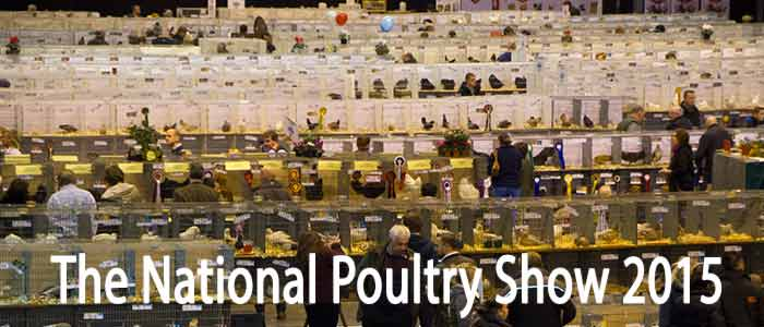 National Poultry Show 2015