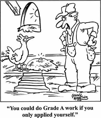 Egg Laying Cartoon