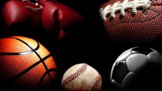 Sport•