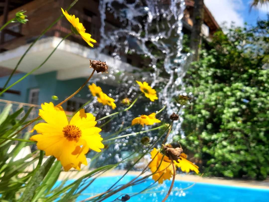 Jardim e Piscina oca poranga guaruja