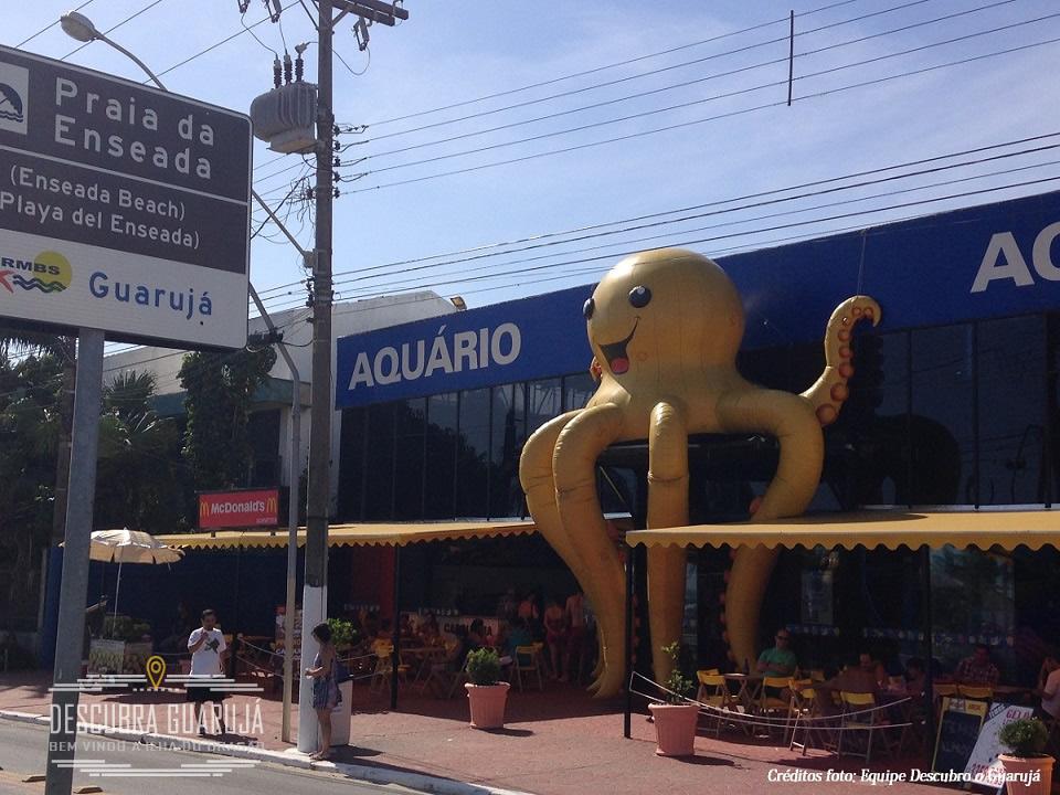 Aquario do Guaruja Acqua Mundo Praia da Enseada