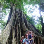 Khao Yia National Parc