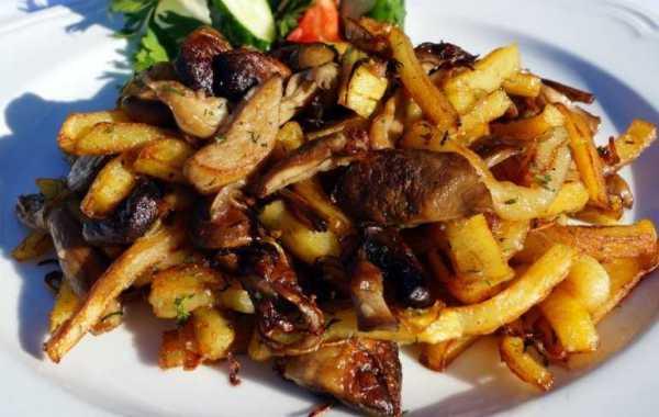 Жареные белые грибы с картошкой: как пожарить на сковороде ...