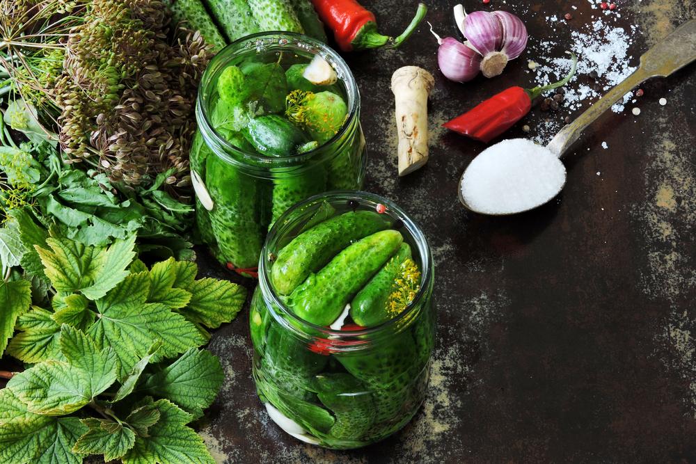 Хрустящие и аппетитные малосольные огурчики на скорую руку (6722) | Povkusu.com