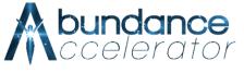 Abundance Accelerator review 2020