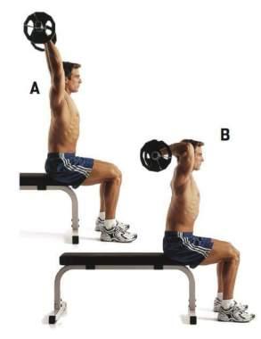 entrenamiento tríceps