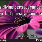 Genius is divine perseverance Genius I cannot have but perseverance all can