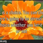 Happiness is a choice You can choose to be happy Theres going to be stress in