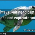 Fear is always waiting to capture all of your future and captivate yourself Meaning