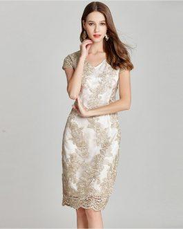Women Plus size lace embroidery Pencil Dress