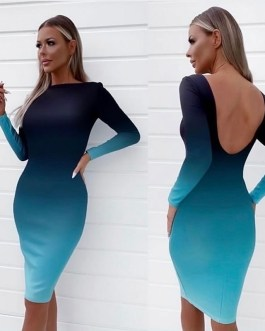 Sexy Bodycon Long Sleeve Party Dress