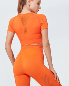 Stretchy plain seamless sports Fitness short blouses