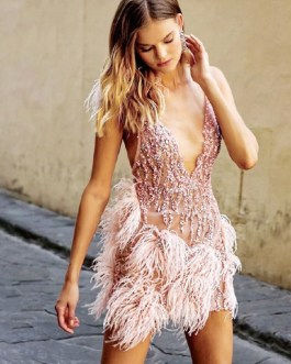 Sexy Patchwork Lace Sequins Feathers Club Party Dress