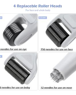6 in 1 Derma Roller Needle