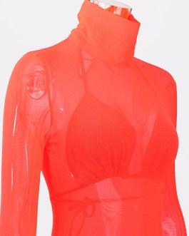 Sexy Long Sleeves High Collar Sheer Bodycon Dress