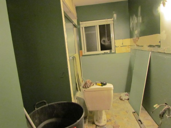 bathroom reno 2