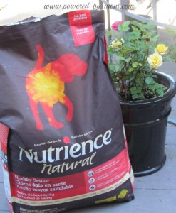 nutrience food