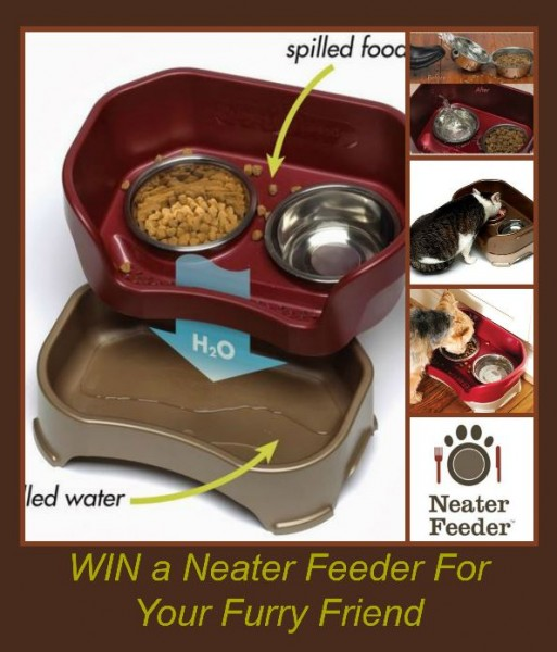 neaterfeeder.giveaway