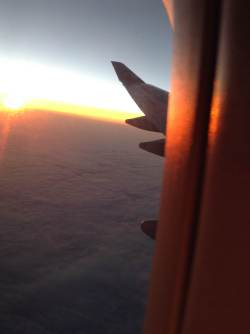 Somewhere between Tokyo and LA