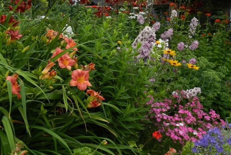 Secrist Gardens Perennial Nursery