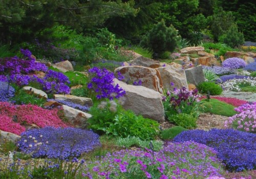 alpine perennial garden