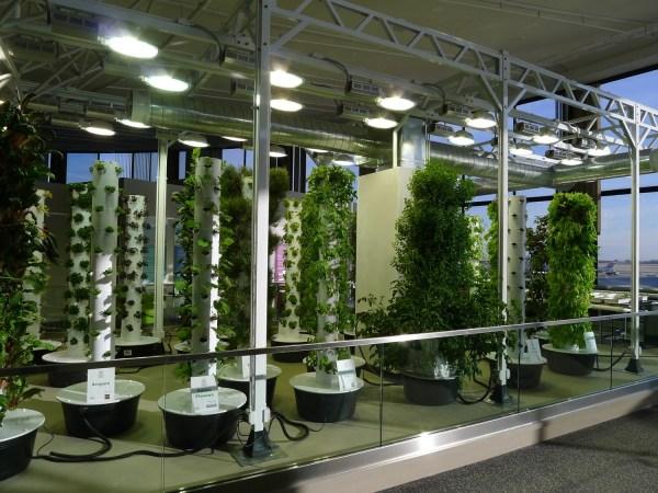 indoor gardening lights The Science Of Grow Lamps | PowerHouse Growers