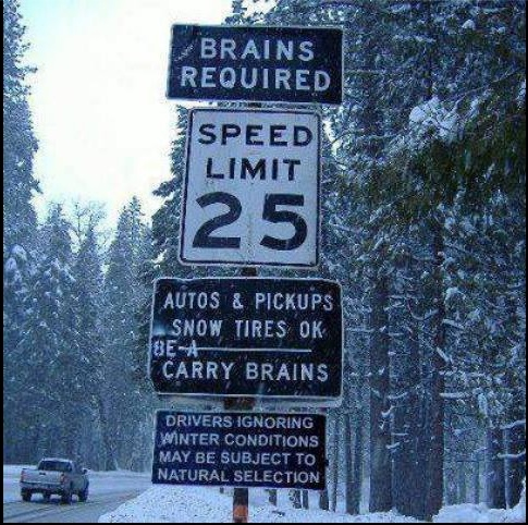 Brains Required copy