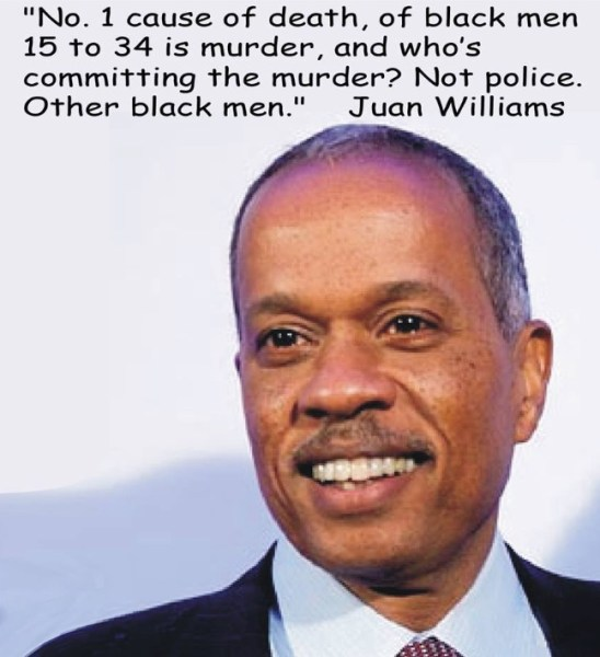 Juan Williams copy