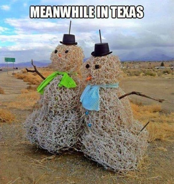 Texas Snowmen copy