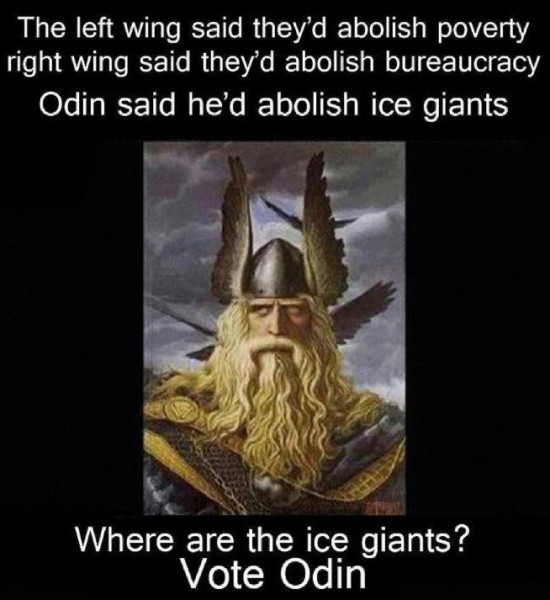 Vote Odin copy