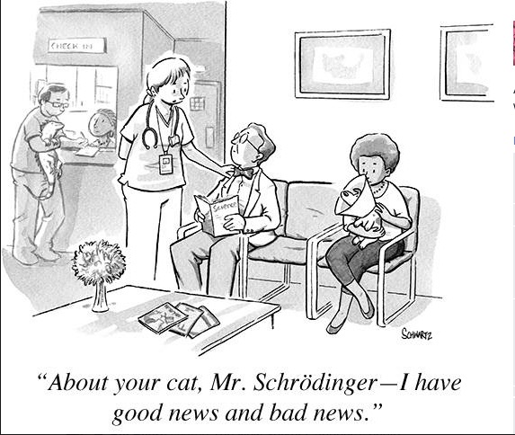 Schroedinger's Cat copy