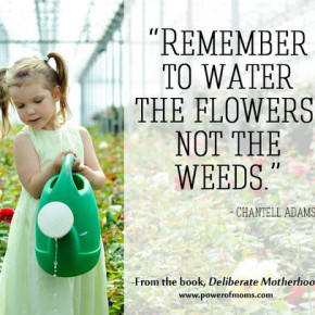 Water the Flowers - Not the Weeds