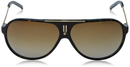 Carrera-Hot-Aviator-Sunglasses-0-0