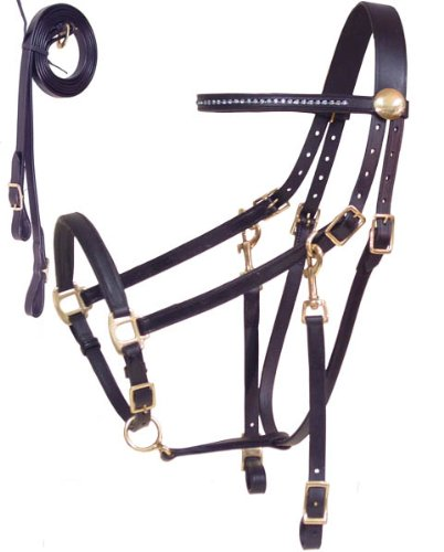 Derby-Originals-Rhinestone-Browband-Leather-Halter-Bridle-Draft-Combo-with-Reins-Havana-0
