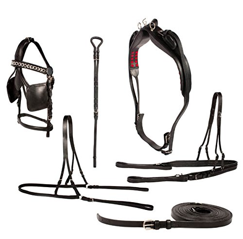 HORSE-DRIVING-HARNESS-FULL-PREMIUM-LEATHER-COMPLETE-SET-0