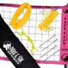 Park-Sun-Spectrum-2000-Volleyball-Net-0