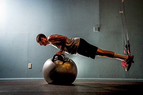 The-HELM-Core-Fitness-Strength-Training-System-Multi-Grip-Push-Up-and-Plank-Device-for-Balance-SwissBosu-Ball-0-1