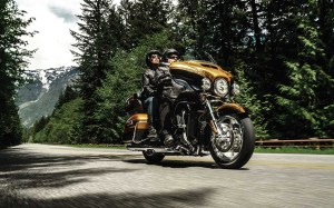 Harley-Davidson dealers lead the industry in collecting customer information.