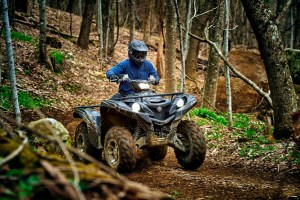 2016 Yamaha Grizzly LE