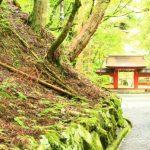 鞍馬寺から貴船神社への所要時間と徒歩のおすすめルート