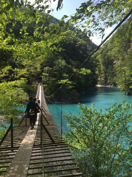 夢の吊り橋2