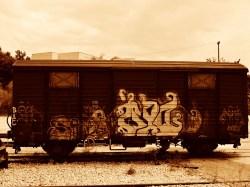 Sepia Photography [pt.4] (2)