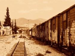Sepia Photography [pt.6] (1)