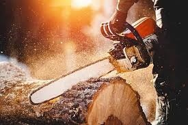 Difference between 25 Degree and 30 Degree Chainsaw