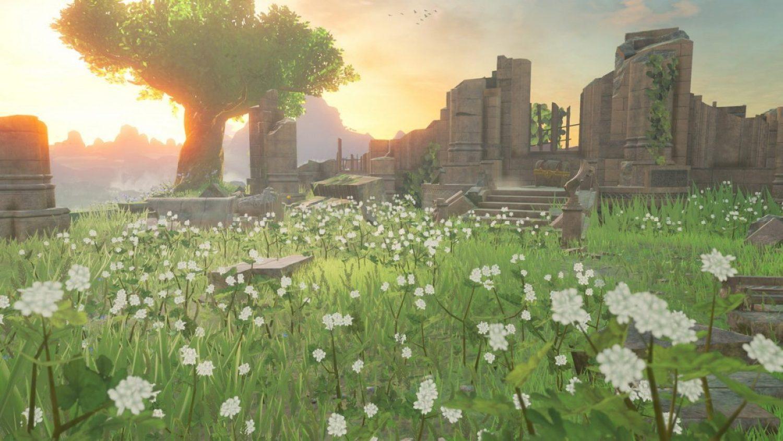 breath-of-the-wild-powerup-flowers.jpg