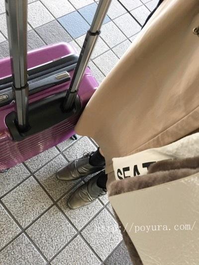 お気に入りの1泊用キャリーバッグ