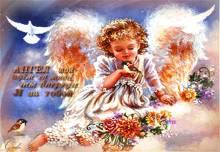 Открытка Ангел-мой... - открытки Картинки с высказываниями
