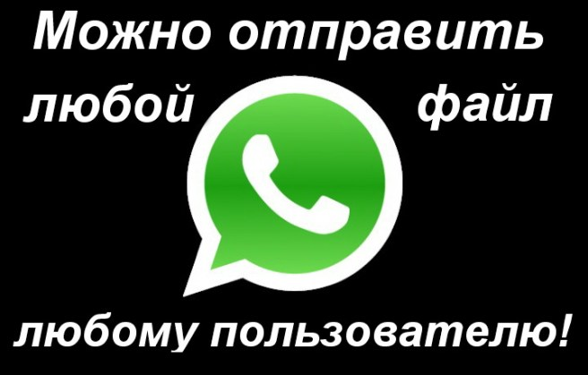 Передача данных WhatsApp