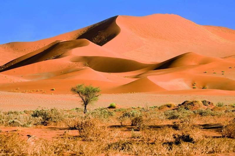 Намиб.