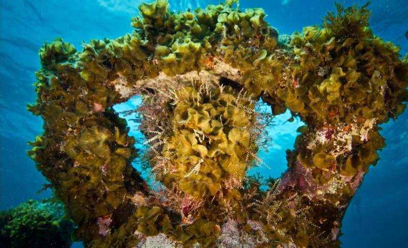 Музей под водой, Мексика.
